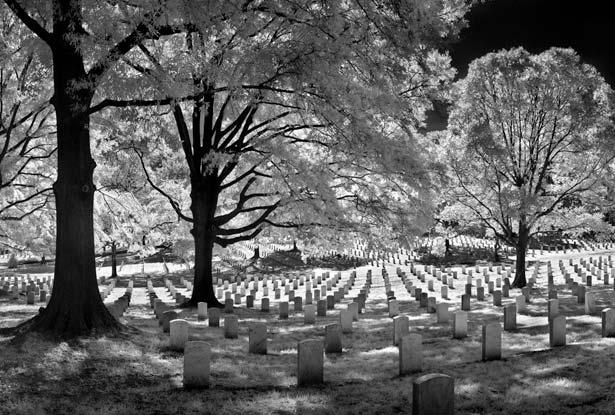 Let us Honor Their Sacrifice