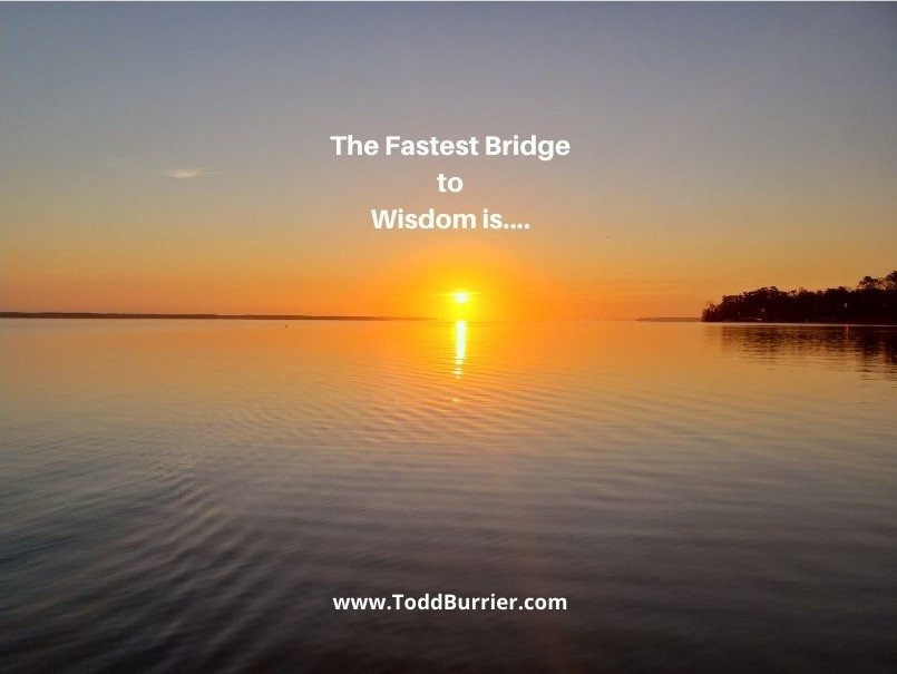 The Fastest Bridge to Wisdom is…