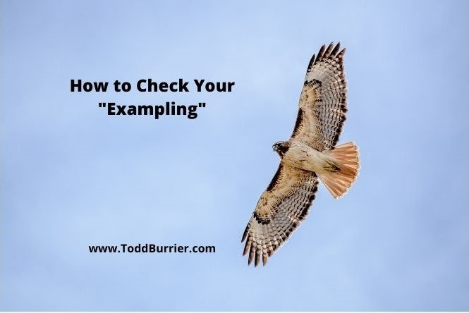"""How to Check Your """"Exampling"""""""